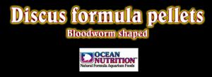 discus formula pellets ocean nutrition