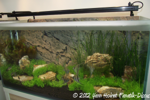 Aquarium Fluval LED Hagen
