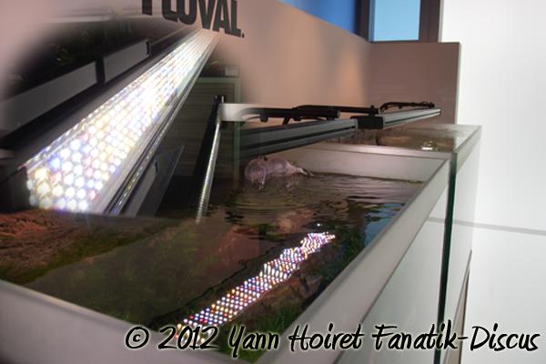 Rampe d'aquarium eclairage LED Fluval
