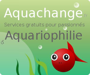 Aquachange annonces d 39 changes et ventes de poissons d for Vente poisson aquarium particulier