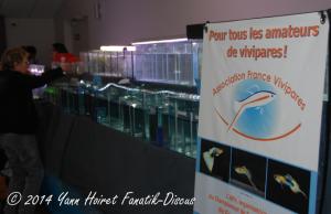 AFV au France discus show 2014