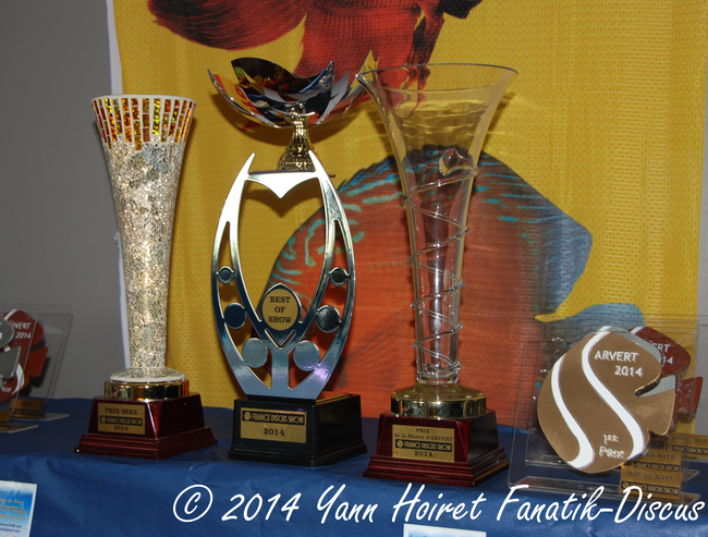 Trophees France Discus Show 2014