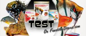 Slider Nourriture Dennerle Fish food