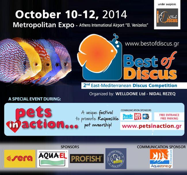 Mediterranean Discus Competition 2014