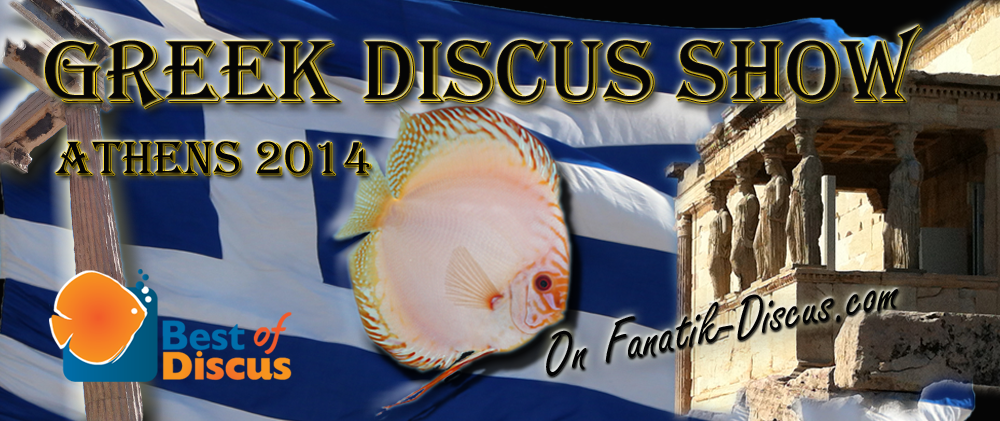 Greek discus show 2014